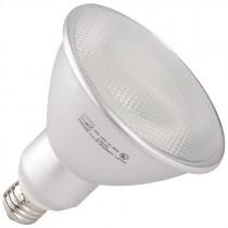 PAR38 23 Watt (1200 Lumens) 2700K Light Bulb