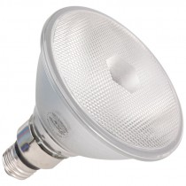 PAR38 60 Watt Flood Light Bulb